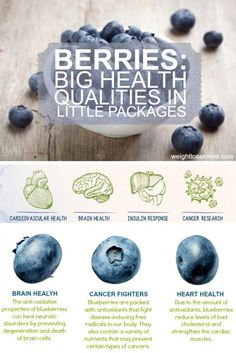 How blueberries can contribute to our health? Health benefits of blueberries and perfect healthy summer snack