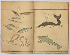 """Kuwagata Keisai ( Masayoshi )  Abreviated drawing !  Choju ryakugashiki, """"Simplified Forms of Drawing Birds and Flowers."""" Published Kwansei 9, 1797, by Suharaya Ichibei."""