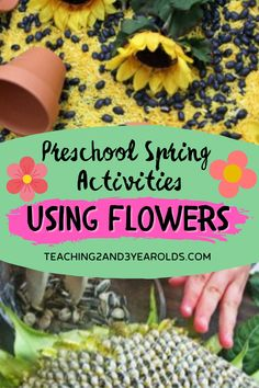This collection of preschool spring activities is all about flowers! Each idea includes lots of hands-on exploration and learning opportunities. Perfect for your spring theme in the classroom or homeschool. Preschool Classroom, Classroom Ideas, Spring Books, Spring Theme, Spring Activities, Toddler Fun, Spring Crafts, Homeschool, Hands