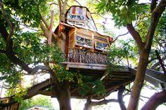 最近、話題の「ツリーハウス」。外見のインパクトもさることながら、自然との一体感を感じられる、心地いい癒やしの空間として人気を集めています。実は、そんなツリーハウスがそのままお店になった素敵なカフェが横浜にあるんです。 幼い頃に夢見た童話の世界を味わえる、横浜のツリーカフェ「なんじゃもんじゃカフェ」についてご紹介します。