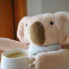 koala 'larko-san'  tea time