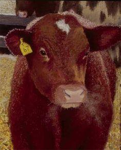 Kathy Imel Gallery Paintings