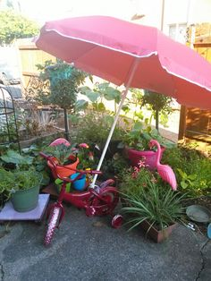 My upcycled bike umbrella stand for the garden and anywhere else i want to wheel it