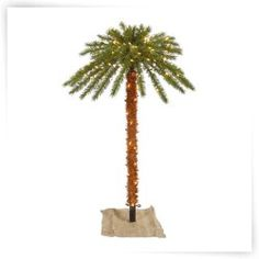 The Holiday Aisle Green Outdoor Palm Tropical Artificial Christmas Tree with 300 LED Clear/White Lights with Stand White Led Lights, White Light, Pencil Christmas Tree, Beach Christmas Trees, Slim Artificial Christmas Trees, Seasonal Decor, Holiday Decor, Metal Tree, Palm