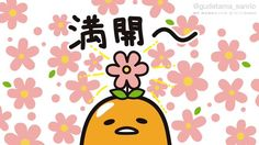 Sanrio Characters, Cute Characters, Egg Pictures, Lazy Egg, Sakura Cherry Blossom, Cherry Blossoms, Japanese Words, Bright Flowers, Vintage Cartoon