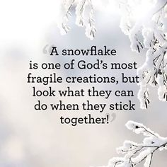 Celebrate the holiday season with these best winter quotes and sayings. Put these quotes about winter in your Christmas card or New Year's card, or just read them to better appreciate a snowy day. Snow Quotes, Winter Quotes, Me Quotes, Quotes About Snow, Quotes About Winter, Faith Quotes, The Words, Adorable Petite Fille, Great Quotes
