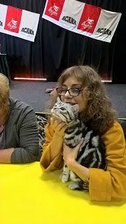 Szuszi Cat Kennel: Kiállítás Cat Kennel, Cat Houses