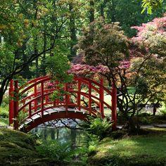Japanese Garden Elements - Bridge  Clingendael, Den Haag