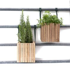 GrowOn + HoldOn - Hanging wooden planter box with self-watering system, 4 colours by Squarely Garden S, Winter Garden, Self Watering Plants, Wooden Planter Boxes, Plant Box, Balcony Railing, Aalborg, Window Boxes, Wooden Diy