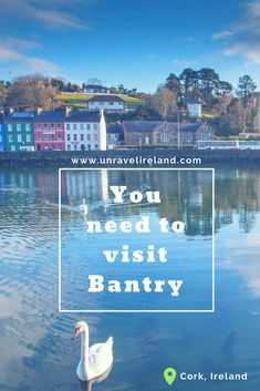 Why you need to visit Bantry Small Towns, Cork, Ireland, To Go, Places To Visit, Posts, Blog, Messages, Blogging