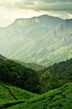 Lush rolling hills, greenery