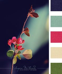 Colors. Sapphire, aqua, magenta, light pink, and green. Love the combination and the picture!