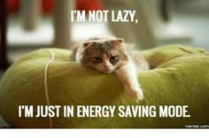 im-not-lazy-itm-just-in-energy-saving-mode-memes-7090797.png (500×331)