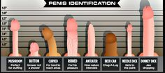According to a recent study, the ideal penis size exists. Keep reading to find out how you measure up.