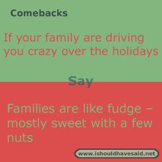 If your #family are driving you #crazy over the holidays, use this kind comeback http://www.ishouldhavesaid.net