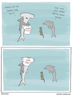 Sharks Rule | I'm laughing so hard right now.... hahahahahahha
