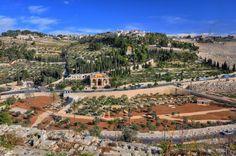 Paul Allen: Will Jesus Return on the Mount of Olives in Jerusa...