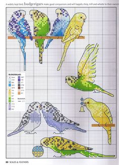 ru / Фото - Picture Your Pet in Cross Stitch - Budgerigar birds. Cross Stitch Boards, Cross Stitch Bookmarks, Just Cross Stitch, Beaded Cross Stitch, Cross Stitch Animals, Cross Stitch Embroidery, Embroidery Patterns, Cross Stitch Designs, Cross Stitch Patterns
