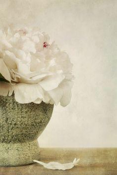 'fleur parfumé' von Priska Wettstein bei artflakes.com als Poster oder Kunstdruck $18.03