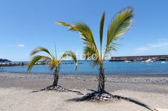 Foto: Spiaggia San Juan, Tenerife - Isole Canarie