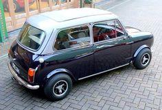 #Mini Radford