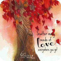 ..scatter Love-seeds.. :)