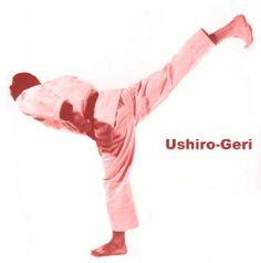 Ushiro-Geri