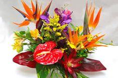 Tropical Centerpiece, Tropical Floral Arrangements