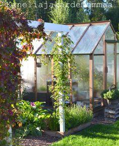 Kanelia ja kardemummaa: kasvihuone  Syyskuu2012