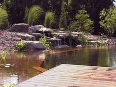 Natural Pool...no chlorine, bromine, or salt...plenty of habitat and cool fresh water