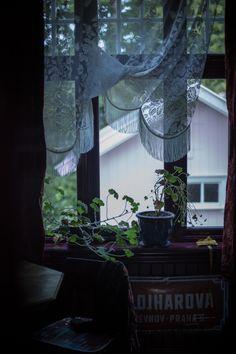 VILLA BETULA – the dark hues of maren ingeborg gråblomst