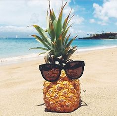 Just a cool pineapple.