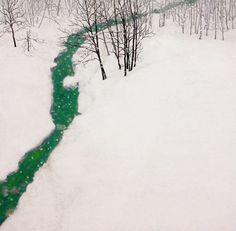 白雪 2010年-59-野地美樹子
