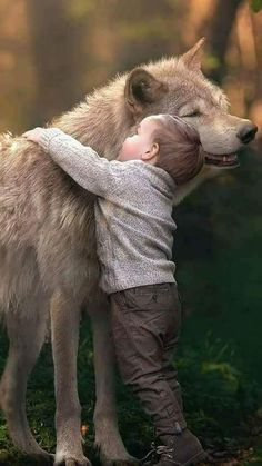 NOT the big bad wolf. Precious hugs.