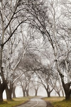Winter in Australia.
