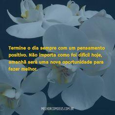 Boa Noite! Termine o dia sempre com um pensamento positivo. Não importa como foi…