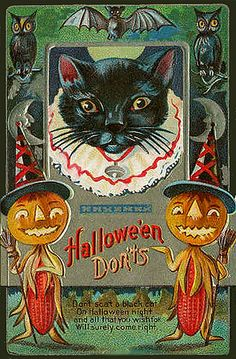 -Corn Cob People and Black Cat!--Vintage Halloween Postcard