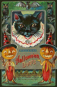 -Corn Cob People and Black Cat!--Vintage Halloween Postcard