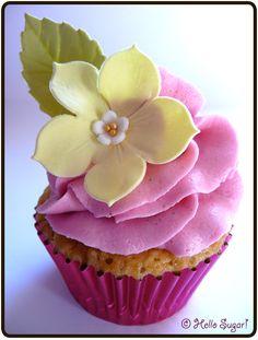vanilj och kokoscupcakes med hallon