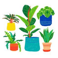 Digital Illustrations for @Teemill Children's Book Illustration, Digital Illustration, Illustrations, Web Design, Graphic Design, Childrens Books, Branding, Projects, Prints