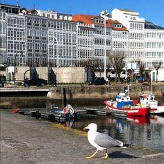 Porto de A Coruña