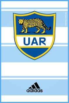 Argentina Pumas Nike Rugby World Cup 2015 Wallpapers) – Wallpapers HD Rugby 7's, Rugby Club, Rugby Wallpaper, Iphone Wallpaper, Pumas, Argentina Rugby, France Rugby, International Rugby, Rugby Shorts