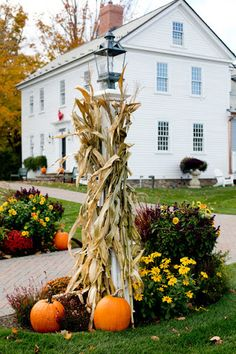 This year I am keeping a lot of our fall decor, with the exception of some fun outdoor front porch and house decoration. The most gorgeous farmhouse style fall decor ideas are right here. Fall decor has gone from lots… Continue Reading → Fall Home Decor, Autumn Home, Autumn Decorating, Decorating Ideas, Decor Ideas, Craft Ideas, Seasonal Decor, Holiday Decor, Fall Harvest