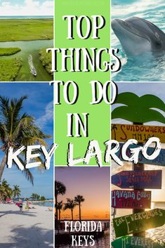 18 Amazing Things to Do in Key Largo [UPDATED for Top things to do in Key Largo – Florida Keys – If you want to have an exquisite vacation filled Florida Vacation, Florida Travel, Florida Keys, Travel Usa, Travel Packing, Florida Honeymoon, Travel Tips, Fl Keys, Vacation Places