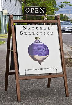 natural selection. branding by omfg co. I love the stained wood sign.