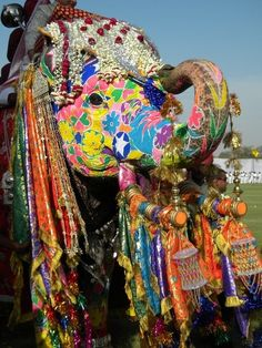 Indian Elephant decorated for festivals.. It's good just if there trunks are up :) but I just think there good luck all together.