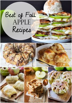Best of Fall Apple Recipes | I want to make and eat all of these!