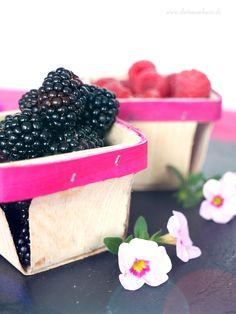 dreiraumhaus häagen dazs rezept blueberries smeg