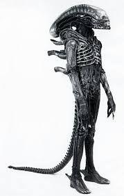 Image result for xenomorph costume