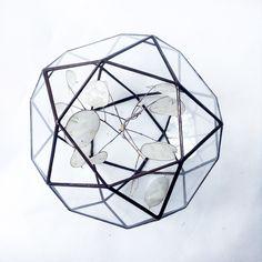 Florarium Ikosiododekaedr